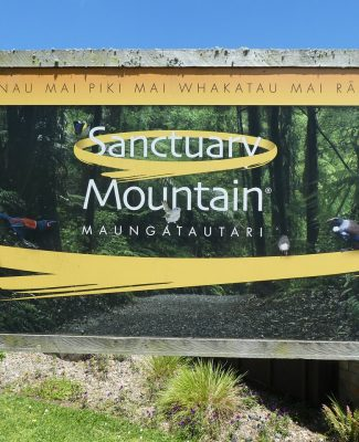 sanctuary-mountain-maungatauta